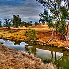 Gum Trees Line The Creek by Terry Everson