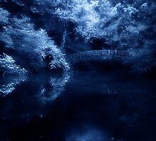 Midnight Dream by M a r i e B a r c i a