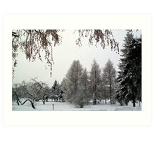 Snow scene in Adazi, Latvia Art Print