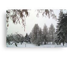 Snow scene in Adazi, Latvia Metal Print