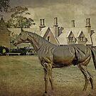 Vintage Stallion at the Grange by TonyCrehan