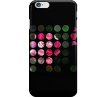 Pink Roses in Anzures 1 Art Circles 1 iPhone Case/Skin