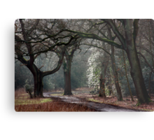 Entry to Mystery Metal Print