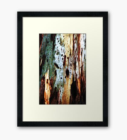 Coloured Bark Framed Print