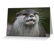 Otterly Content Greeting Card