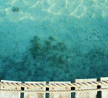 Sharm El Sheikh, Egypt by Jenna Bussey