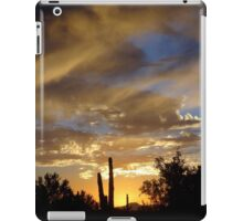 End of a Desert Day iPad Case/Skin