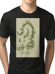 Plantarum Indigenarum et Exoticarum - Lukas Hochenleitter und Kompagnie 1788 - 372 Tri-blend T-Shirt