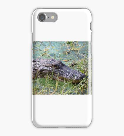 Gator Closeup iPhone Case/Skin
