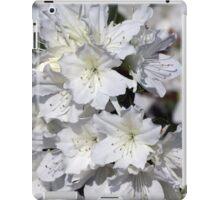 White Azalea Flowers ~ Azalea Bursts iPad Case/Skin