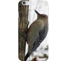 Red-bellied Woodpecker sticks out tongue iPhone Case/Skin