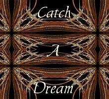 Catch A Dream by Marie Sharp