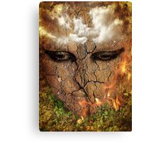 Draught (3) Waiting for the rain Canvas Print