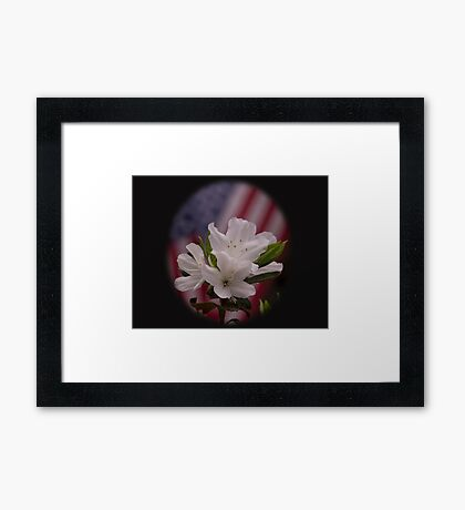American Beauty  American Flag with White Azalea Flowers Framed Print