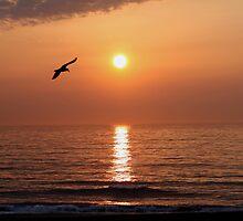 Good Morning Virginia Beach by Bonnie Robert