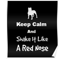 Keep Calm and Shake It Like a Red Nose Poster