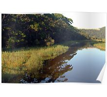 Early reflections ~ Thurra River Poster