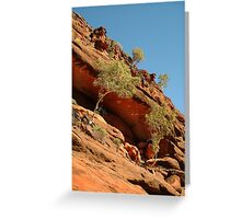 Palm Valley,near the West McDonell Ranges,N.T. Greeting Card