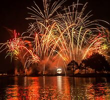 Celebrate! Illuminations Reflections of Earth at Epcot by jjacobs2286
