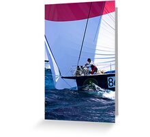 No. 86 Sydney to Hobart yacht race Greeting Card