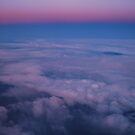 Sunset Flight by Tori Snow