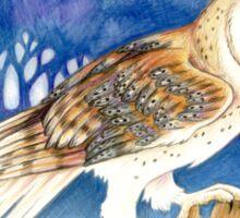 Winter Barn Owl Sticker