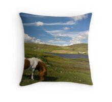 Shetland Summer Grazing Throw Pillow