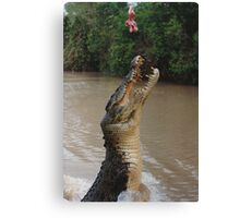 Jumping Crocodile Canvas Print