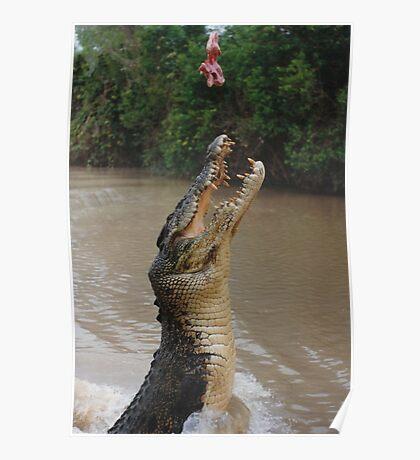 Jumping Crocodile Poster