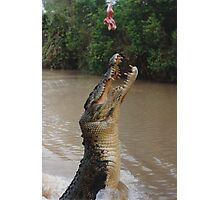 Jumping Crocodile Photographic Print