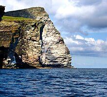 Noss Cliffs by Theresa Elvin