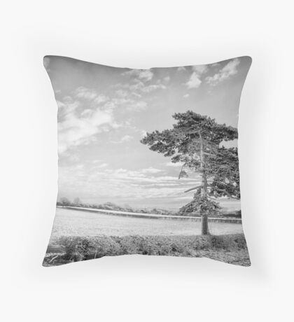 Once a forest stood here. Throw Pillow