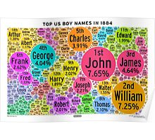 Top US Boy Names in 1884 - White Poster
