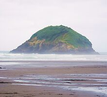 Little island - Okura beach, NZ by Emma Hughes