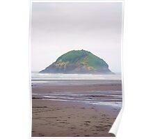 Little island - Okura beach, NZ Poster