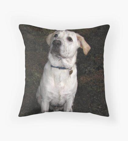 mucky pup Throw Pillow