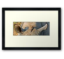 Rhinos Do Have Something Between Their Ears Framed Print