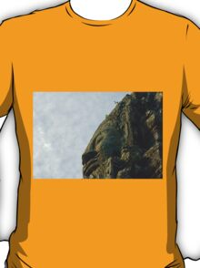 One of the 4 faces of a bayon tower T-Shirt