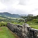 Ft. Thomas, St. Kitts by Memaa