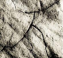 Walking Man Photographic Print