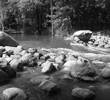 Chippewa River Rapids by Timothy J Badgley