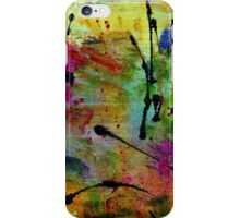 Miracle Valley iPhone Case/Skin