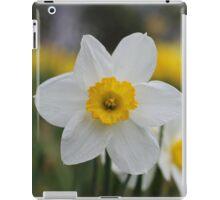 A Daffodil Amongst Daffodils iPad Case/Skin