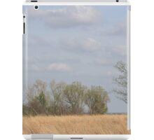 Kansas Colorful Countryside iPad Case/Skin