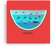 Water Melon Canvas Print