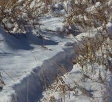 Track's in the Snow in Kansas Sticker