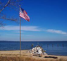 Old Glory on the Bay by Timothy Eric Hites