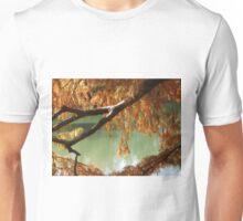 Colorful Fall Bald Cypress Unisex T-Shirt