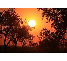 Blaze Orange Kansas Sunset with Tree silhouette's Photographic Print