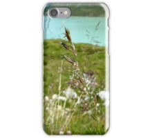 Swaying Grass In Austrian Mountains iPhone Case/Skin